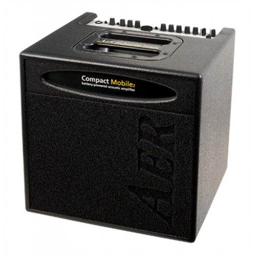 Amplifiers for Acoustic Instruments